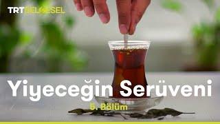 Çay Üretim Tesisi