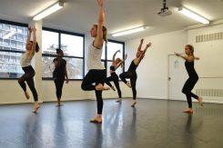 Dans Okulu İş Planı