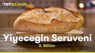 Ekmek Üretim Tesisi
