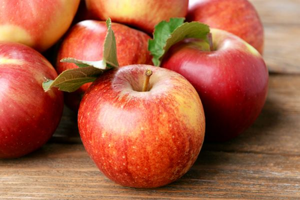 elma yetiştiriciliği iş fikri