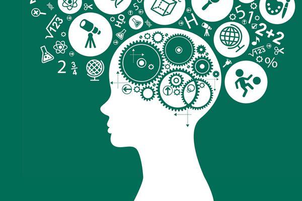 İş Dünyasında Başarılı Olmak İçin Üniversite Eğitimi Şart Mıdır?