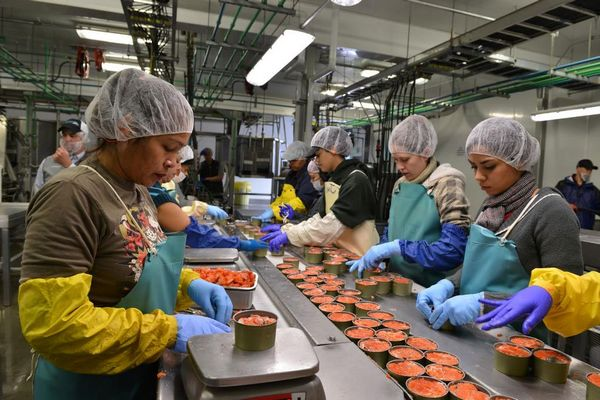 konserve fabrikası açmak iş fikri