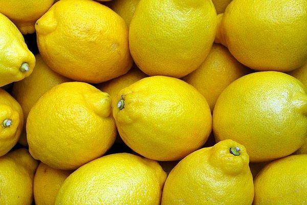 limon üretimi - iş fikri