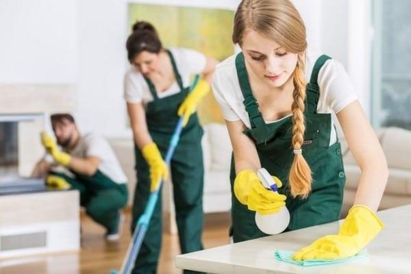 Profesyonel Ev Temizliği İşi Yapmak