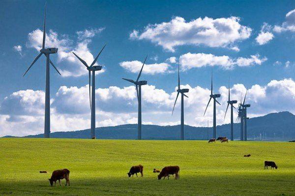 Rüzgardan Elektrik Üretmek