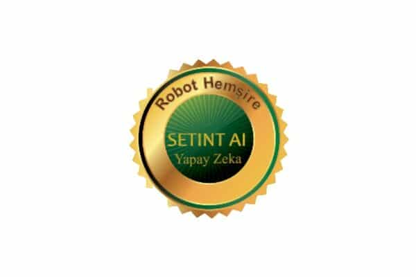 Setint AI Franchising