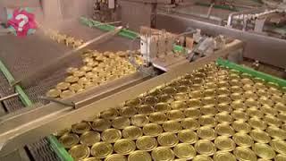 Ton Balığı Üretim Tesisi
